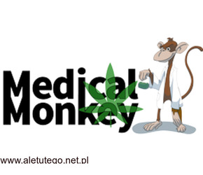 Susz konopny legalny od Medical Monkey